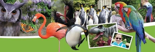 Birdland Park and Gardens banner image