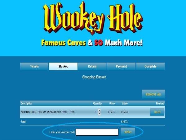 How to use Wookey Hole Caves discount codes